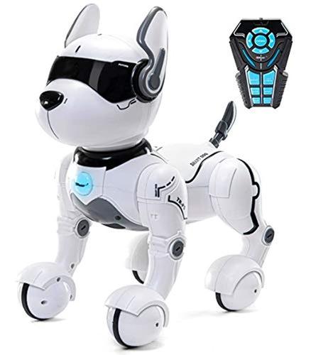 Robot De Control Remoto Para Perros, Robots Para Niños, Rc D