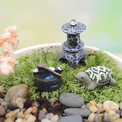Juego De Macetas En Miniatura Para Decoracion De Plantas To
