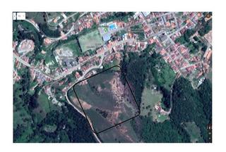 Vendo Terreno Com 4.895 Ha No Centro De Delfim Moreira