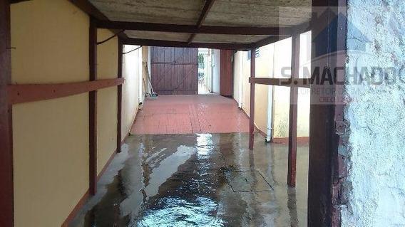 Terreno Para Venda Em Santo André, Parque Novo Oratório - Ve0625