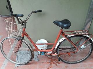 Bicicleta Paseo Dama Rodado 26