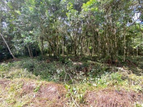 Terreno De Chácara Em Itanhaém Com Contrato 7866