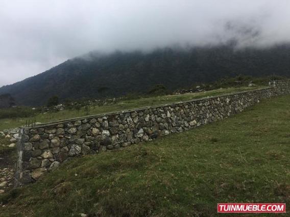 Terreno 1285 Mts Venta La Culata Negociable Rah 19-13253 C A