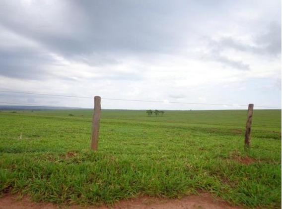 Chácara / Sítio / Fazenda - Venda - Rodovia - Cod. 13547 - V13547