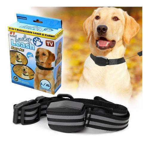 Collar Para Perro Con Correa Retráctil Para Razas Pequeñas