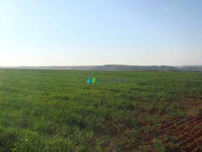 Fazenda Para Lavouras 1050 Ha Pratinha (mg) - Codigo: Fa0194 - Fa0194