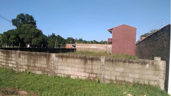 Terreno Para Venda Em Mongaguá, Balneário Marli - 541_1-1136661