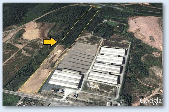 Ótimo Terreno Industrial Na Rodovia Antonio Heil - 268-im256617