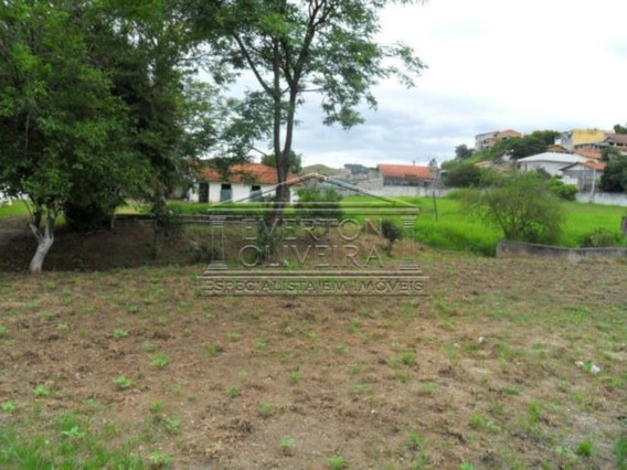 Terreno - Jardim Sao Luiz - Ref: 767 - V-767