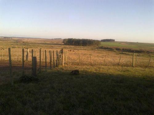 Campo Agrícola Ganadero En Rocha Ref. 4030