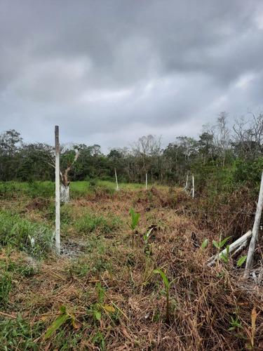 Imagem 1 de 4 de Lote De Esquina Em Itanhaém-sp Litoral Sul