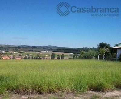 Terreno Residencial À Venda, Cerrado, Alambari - Te1271. - Te1271