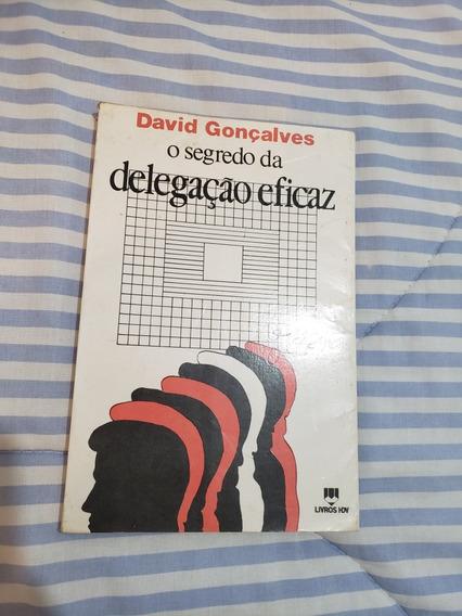 Revista O Segredo Da Delegação Eficaz David Gonçalves
