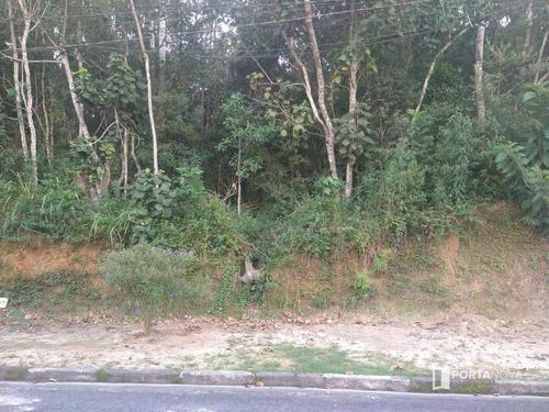 Terreno À Venda, 960 M² Por R$ 265.000,00 - Jardim Dos Ypês - Embu Das Artes/sp - Te0275
