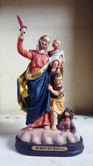 Imagem Resina Nossa Senhora Da Defesa Santa 18cm