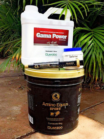 1 Amino Equus Sport 10kg E 1 Gama Power 5 Lt