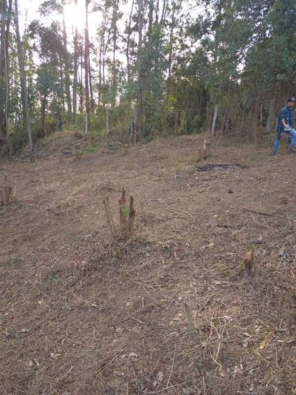 36d-terreno Com Área Rural E Fazenda Próximas