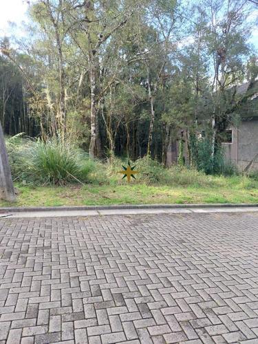 Imagem 1 de 3 de Terreno A Venda - 1060