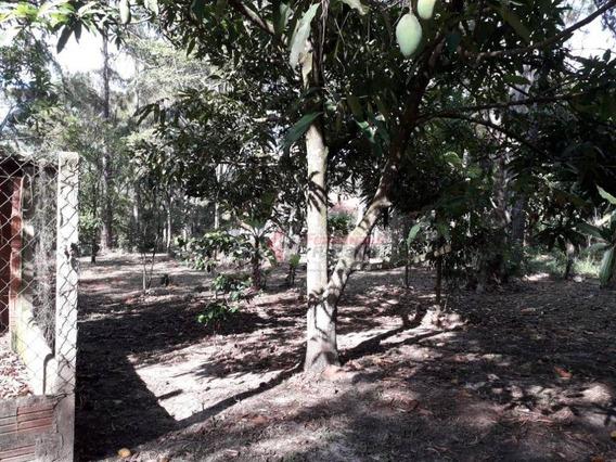 Chácara À Venda, 5000 M² Por R$ 530.000 - Camargo I - São Pedro/sp - Ch0041