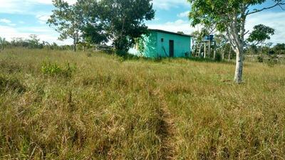 Vendo Sitio Em Itanagra Próximo A Linha Verde