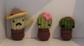 crochet cactus https://www.facebook.com/punacactus   Cactus de ...   177x320