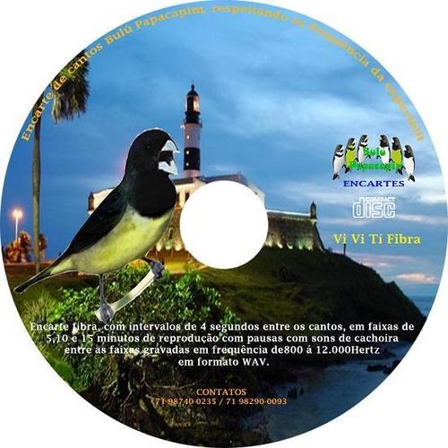 Imagem 1 de 1 de Encarte Vi Vi Tí Fibra Envio Via E-mail