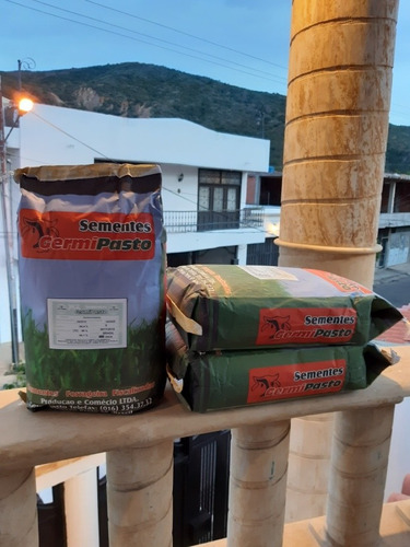 Semilla De Pasto Brachiaria Piata Alta Pureza(bolsa De 5 Kg)