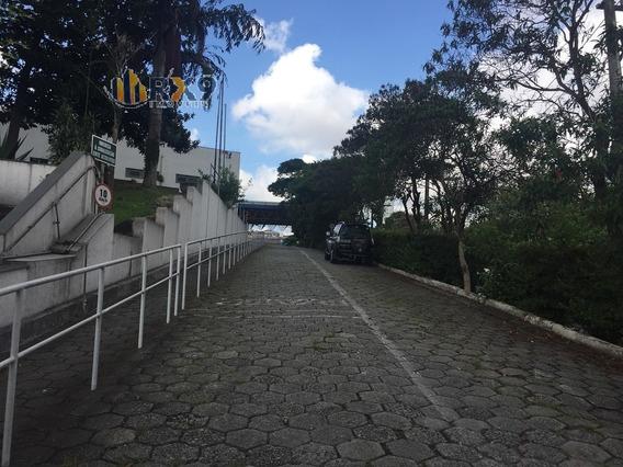 Comercial Para Venda, 0 Dormitórios, Parque Fongaro - São Paulo - 463
