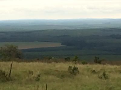 R$24.000/hectare - Fazenda Sp Frente Para Asfalto