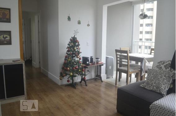 Apartamento Para Aluguel - Vila Andrade, 3 Quartos, 62 - 893000726