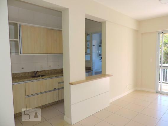 Apartamento Para Aluguel - Itacorubi, 2 Quartos, 65 - 893115561