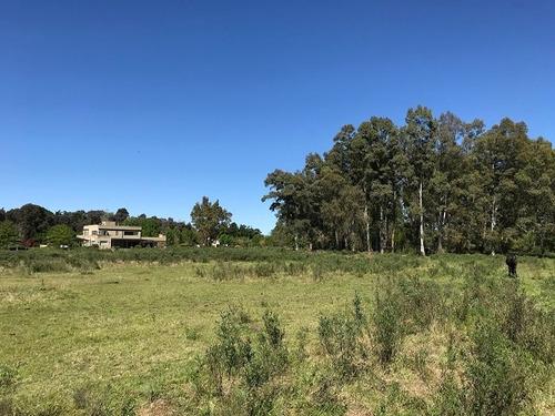 Imagen 1 de 12 de Terreno En Venta En San Antonio De Areco