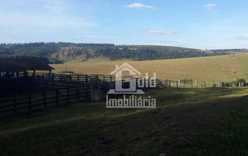 Imagem 1 de 6 de Fazenda À Venda, 135 Alqueires M² Por R$ 11.475.000 - Zona Rural - Avaré/sp - Fa0140