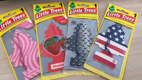 50 Little Trees Frete Grátis