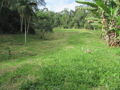 Lindo Terreno Juquitiba/frente Asfalto/plano/ref: 04669