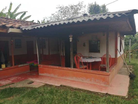 Finca De 6 Cuadras En Quimbaya