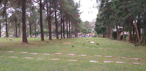 Jazigo (3) Gavetas + 2 Ossários Cemitério Jardim Da Colina