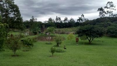 Terreno Em Nazaré