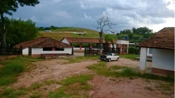 Excelente Fazenda - Possui Casa Sede,com Lareira,churrasqueira Com Forno Á Lenha, Dependência De Empregados - Ch0079