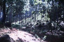 Terreno En Santa Lucia