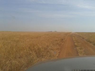 Fazenda A Venda Em Barra Do Ouro - To. ( Agricultura ) - 497