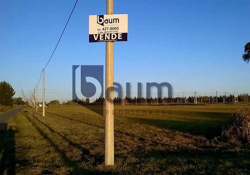 Lotes En Venta- Calle 501 Hasta 507 E/ 137 Y 138-barrio Don