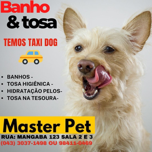 Imagem 1 de 5 de Pet Shop Master Pet - Banho - Tosa Higiênica - Tosa Tesoura.
