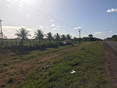 Vendo Fazenda Presidente Figueiredo Amazonas - Fa00003 - 32042183