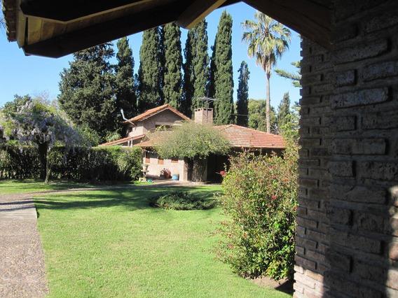 Excelente Oportunidad! Casa Quinta En Villa Elisa, Buenos Aires