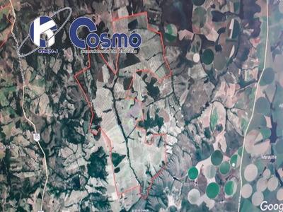 Fazenda, A Venda, Em Luziânia - Go - Fa00100 - 33765010