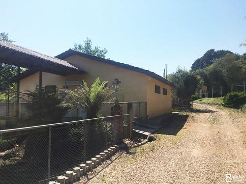 Imagem 1 de 14 de Chacara - Colonia Murici - Ref: 8415 - L-8415