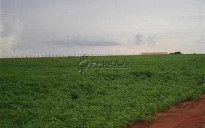 Fazenda Com 67.000 Hectares Em São Félix Do Araguaia Mt