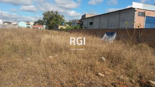 Terreno Em São Sebastião - El56355912