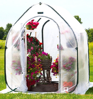 Invernadero Pop Up Flowerhouse Plant House 5 Mediano 152x152